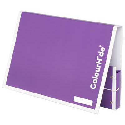 Image for COLOURHIDE MY HANDY DOCUMENT BOX A4 PURPLE from Mackay Business Machines (MBM)