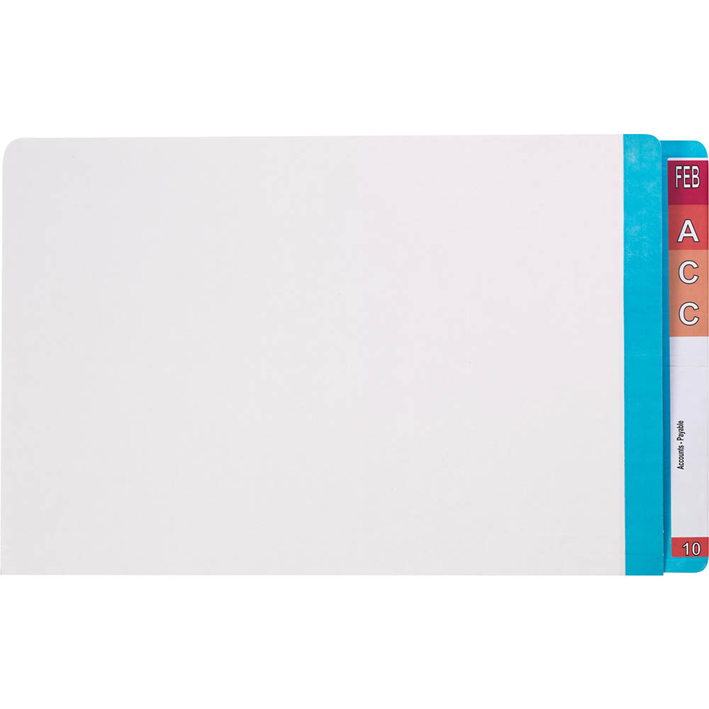 Image for AVERY 42436 LATERAL FILE WITH LIGHT BLUE TAB MYLAR FOOLSCAP WHITE BOX 100 from OFFICE NATIONAL CANNING VALE, JOONDALUP & OFFICE TOOLS OPD