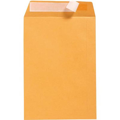 Image for CUMBERLAND ENVELOPES POCKET PLAINFACE STRIP SEAL 100GSM 380 X 255MM GOLD BOX 250 from Mackay Business Machines (MBM)
