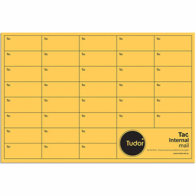 Image for TUDOR ENVELOPES INTEROFFICE POCKET TAC SEAL 100GSM 380 X 255MM GOLD BOX 250 from Mackay Business Machines (MBM)