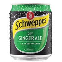 SCHWEPPES DRY GINGER ALE CAN 250ML CARTON 24