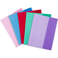 CONTACT BOOK SLEEVES A4 ASSORTED PACK 25