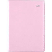 SOHO DAY TO PAGE 2018 DIARY A5 1/2HR APPOINTMENTS PINK
