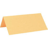 COLOURFUL DAYS PEARLESCENT PLACE CARD GOLD PACK 10