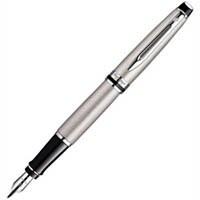 WATERMAN EXPERT FOUNTAIN PEN STAINLESS STEEL CHROME TRIM