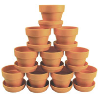 COLORIFIC PLANT POT WITH SAUCER TERRA COTTA PACK 10