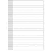 DEBDEN DAYPLANNER DESK EDITION REFILL NOTEPAD 216 X 140MM WHITE PACK 2