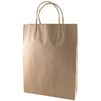 CAPRI KRAFT PAPER CARRY BAG BM TWIST HANDLE MEDIUM BROWN PACK 250