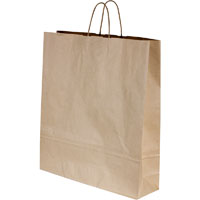 CAPRI KRAFT PAPER CARRY BAG B2 TWIST HANDLE LARGE BROWN PACK 250
