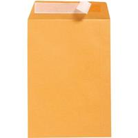 OFFICE NATIONAL C4 ENVELOPES POCKET PEEL N SEAL 85GSM 229 X 324MM GOLD BOX 250