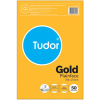 TUDOR ENVELOPES POCKET PLAINFACE STRIP SEAL 80GSM 380 X 255MM GOLD PACK 50