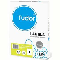 TUDOR ADHESIVE LABELS 1UP 210 X 297MM WHITE BOX 100